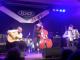 Akkordeonfestival Wien 2015 (photo)